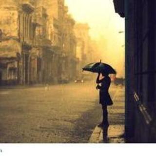 《等你,在雨中》作者:余光中