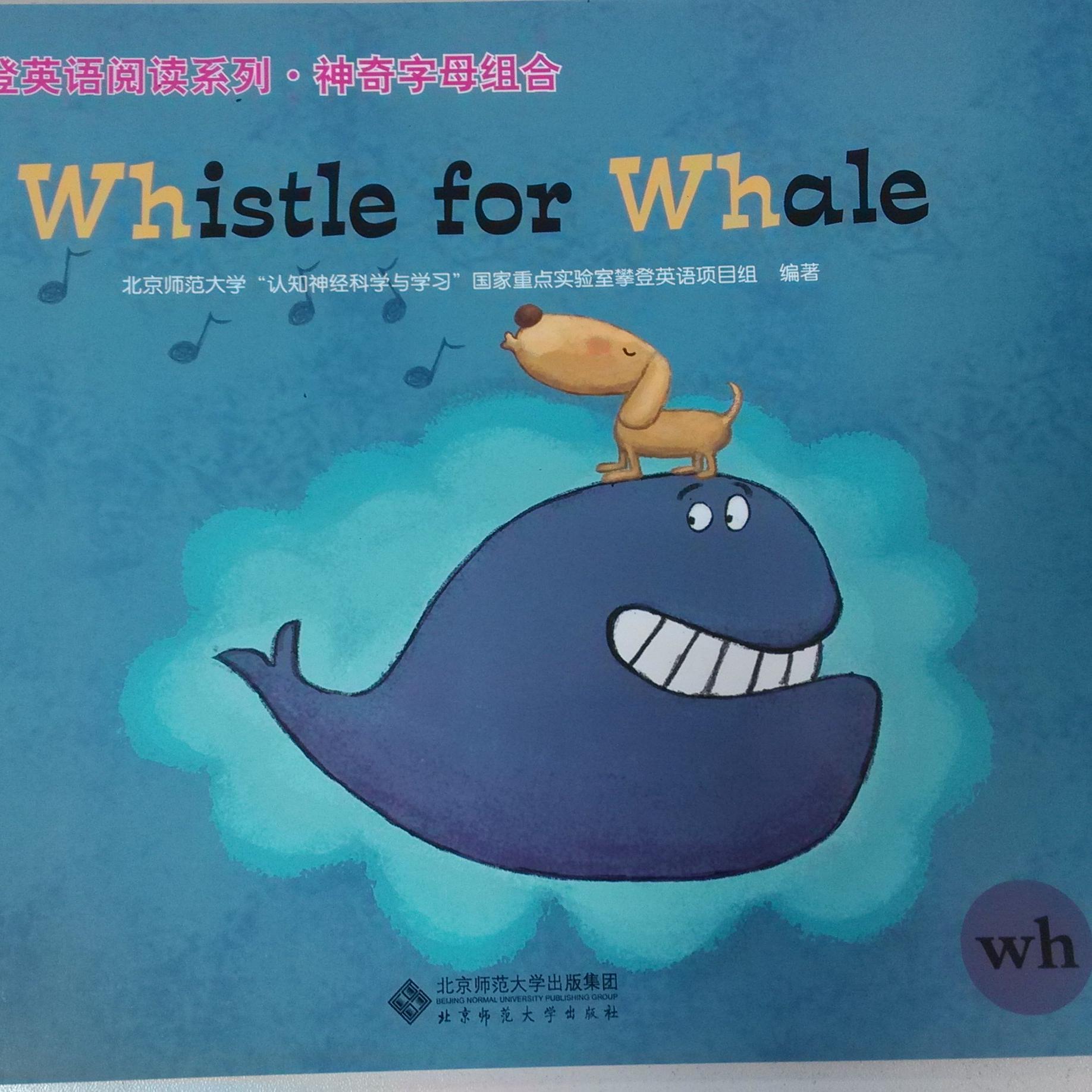 鲸鱼组合简笔画图片