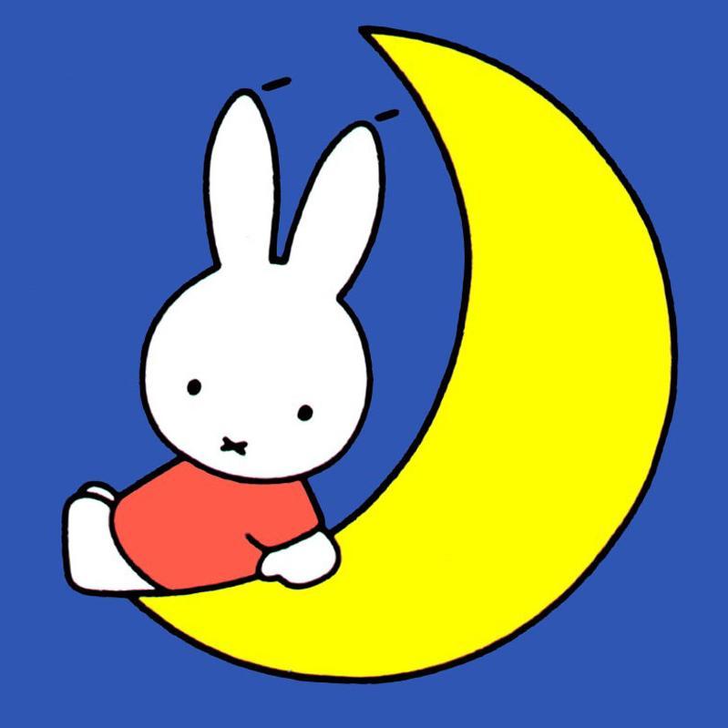 """"""" 它把小兔子放到用树叶堆起来的床上,低下头来亲吻小兔子,对它说晚安"""