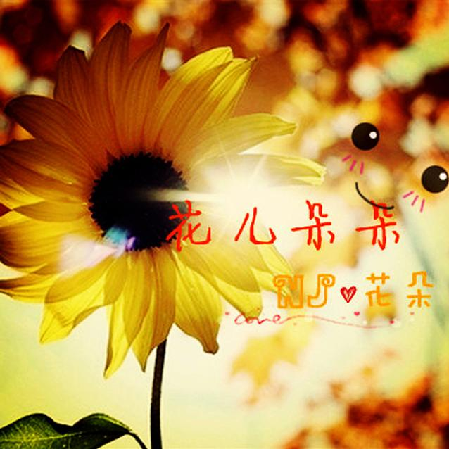 阳光里花朵微信头像