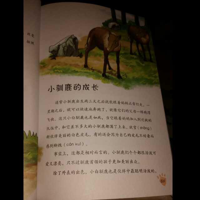西顿动物故事--驯鹿之歌03