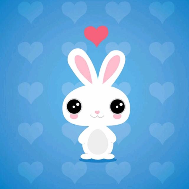 小白兔的糖果店