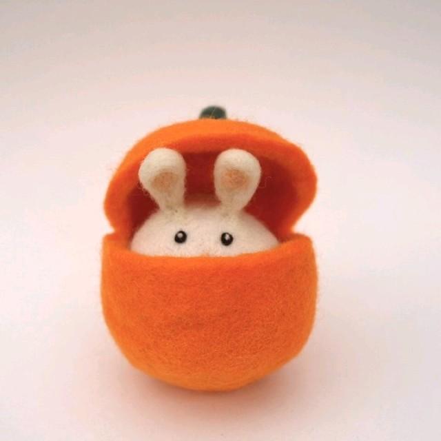 吃兔子的胡萝卜_荔枝fm