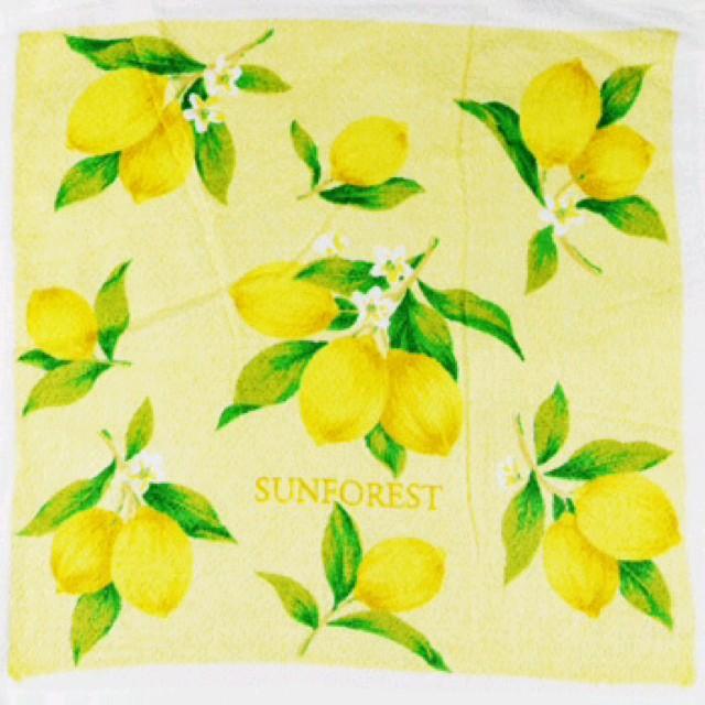 柠檬可爱小清新图片