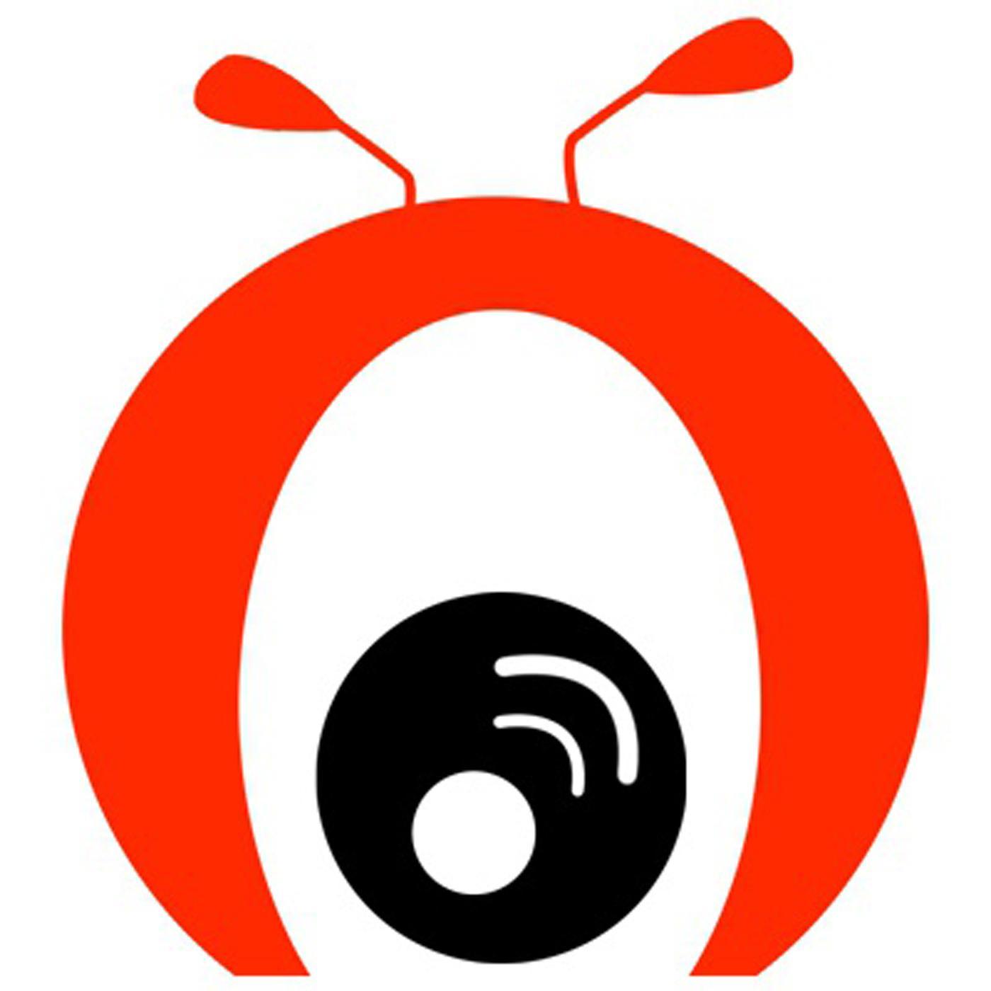 黑蚂蚁电台